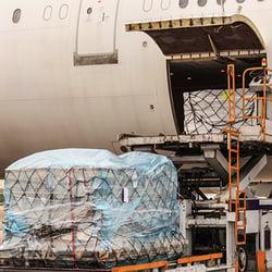 ocean carriers cargo